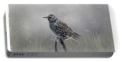 Starling In Winter Portable Battery Charger