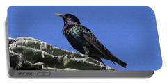 Starling On Saguaro Arm Portable Battery Charger by Tom Janca