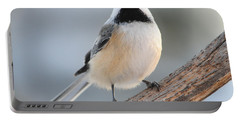 State Bird Of Massachusetts Portable Battery Charger