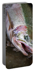 Steelhead 1 Portable Battery Charger