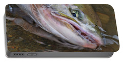 Steelhead  2 Portable Battery Charger