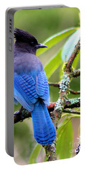 Stellar Blue Jay Portable Battery Charger