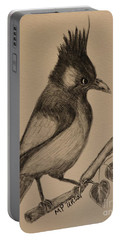 Stellar's Jay - Charcoal Portable Battery Charger