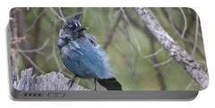 Portable Battery Charger featuring the photograph Stellar's Jay by Gary Lengyel