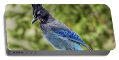 Steller's Jay On Granite Portable Battery Charger