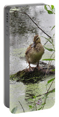 Portable Battery Charger featuring the photograph Stepping Out On My Own by I'ina Van Lawick
