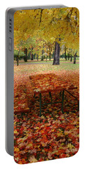 Still Fall Portable Battery Charger