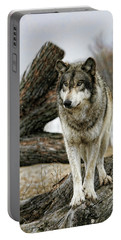 Still Wolf Portable Battery Charger