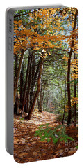 Stillness Portable Battery Charger by Elfriede Fulda
