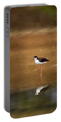 Stilt And Reflection Portable Battery Charger