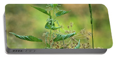 Portable Battery Charger featuring the photograph Stinging Nettle by Ann E Robson