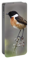 Stonechat Portable Battery Charger by Terri Waters