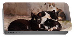Portable Battery Charger featuring the photograph Street Cats - Portugal by Barry O Carroll
