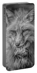 Striking A Pose Black And White Portable Battery Charger