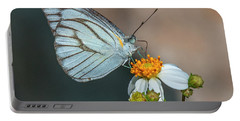Striped Albatross Butterfly Dthn0209 Portable Battery Charger