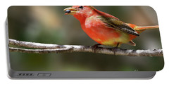 Stuffed Summer Tanager Portable Battery Charger