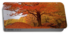 Sturdy Maple In Autumn Orange Portable Battery Charger