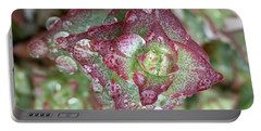 Succulent Abstract Portable Battery Charger by Russell Keating