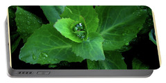 Succulent After The Rain  Portable Battery Charger
