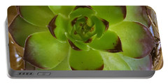 Succulent Portable Battery Charger by Jim Harris