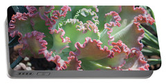 Succulent Series II Portable Battery Charger