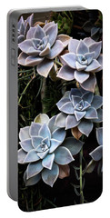 Succulents Graptopetalum Paraguayense     Portable Battery Charger by Catherine Lau
