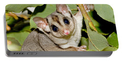 Sugar Glider Portable Battery Charger