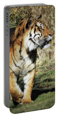 Sumatran Tiger  Portable Battery Charger