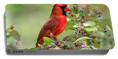 Summer Cardinal Portable Battery Charger