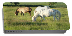 Summer Grazing Portable Battery Charger