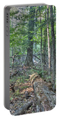 Summer In A Canadian Forest Portable Battery Charger