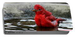 Summer Tanager In Bird Bath Portable Battery Charger