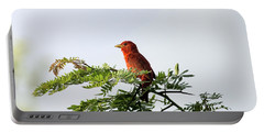 Portable Battery Charger featuring the photograph Summer Tanager In Mesquite Scrub by Robert Frederick