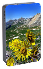 Portable Battery Charger featuring the photograph Summer Tundra by Karen Shackles