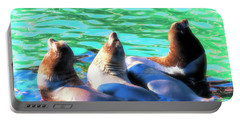 Sun Basking Seals Portable Battery Charger