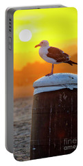 Sun Gull Portable Battery Charger