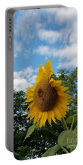 Sun Power Portable Battery Charger by Angela J Wright