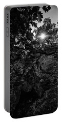 Sun Through The Trees Portable Battery Charger