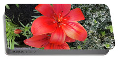 Sunbeam On Red Day Lily Portable Battery Charger