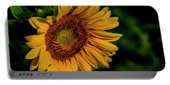 Portable Battery Charger featuring the photograph Sunflower 2017 11 by Buddy Scott