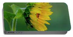 Portable Battery Charger featuring the photograph Sunflower 2017 2 by Buddy Scott