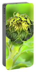 Portable Battery Charger featuring the photograph Sunflower Beauty 666 by Kevin Chippindall