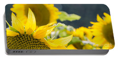 Portable Battery Charger featuring the photograph Sunflowers 14 by Andrea Anderegg