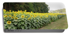 Portable Battery Charger featuring the photograph  Sunflowers 6 by Andrea Anderegg