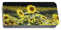 Portable Battery Charger featuring the photograph Sunflowers 9 by Andrea Anderegg