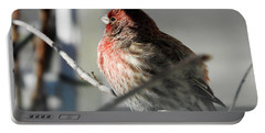 Sunlight On My Feathers Portable Battery Charger