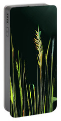 Portable Battery Charger featuring the digital art Sunlit Grasses by Gina Harrison