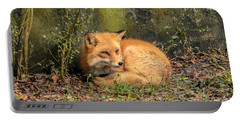 Sunning Fox Portable Battery Charger