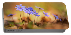 Portable Battery Charger featuring the photograph Sunny Afternoon With Liverworts by Jaroslaw Blaminsky
