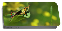 Green Grasshopper Portable Battery Charger